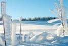 Kälteallergie: Ein Mythos?