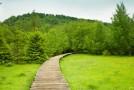Ab ins Freie – trotz Pollenallergie