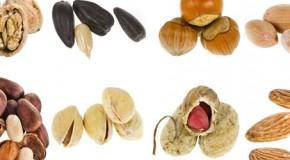 FAQ: Lebensmittel-Allergie