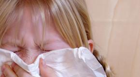MERIT-Studie: Hausstaubmilben-Allergie