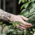 Tattoo – problematisch für Allergiker?