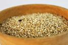 Urkörner bei Glutenunverträglichkeit