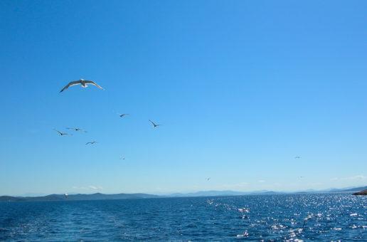 Meerwasser zur Linderung bei Neurodermitis