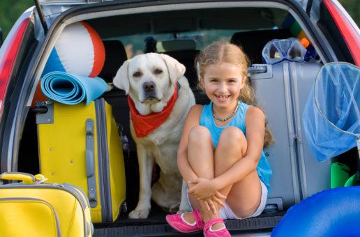 Urlaub mit dem allergischen Hund